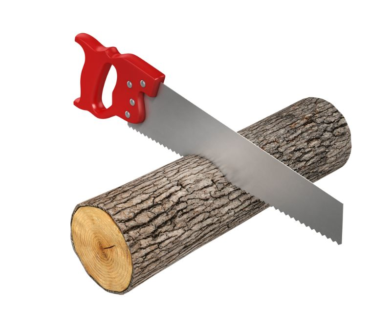 sawing a tree branch