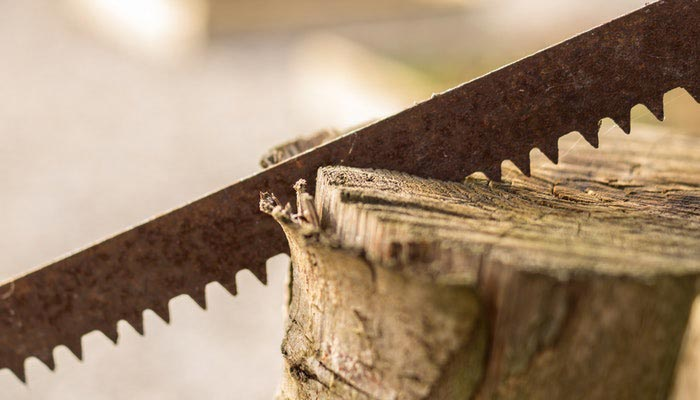 Buyer's Guide What are Contractor Table Saws?